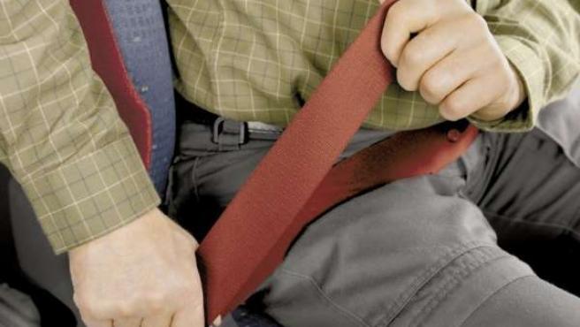 Recurso de cinturón de seguridad, vial,
