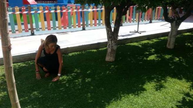 Medio Ambiente incorpora a las zonas ajardinadas nuevas plantas tapizantes