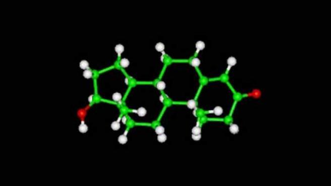 Imagen por ordenador de una mólecula de testosterona.