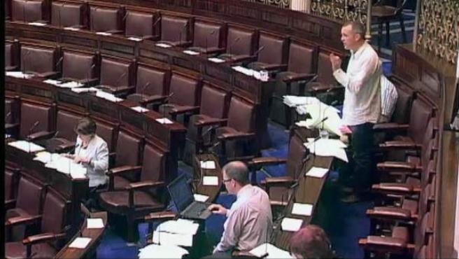 Parlamento de Irlanda.