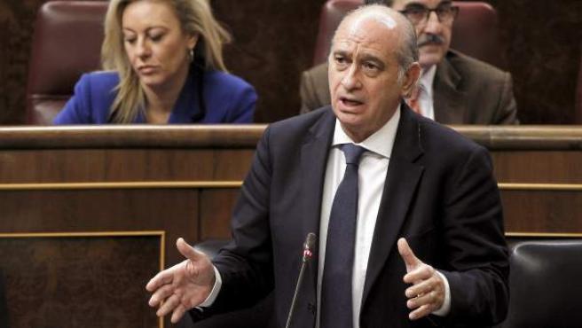 El ministro del Interior, Jorge Fernández Díaz, durante su intervención en una sesión de control al Gobierno, en el pleno del Congreso.