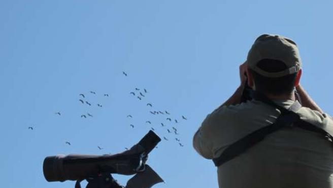 Un ornitólogo observa aves migratorias en el Collado de Lindus