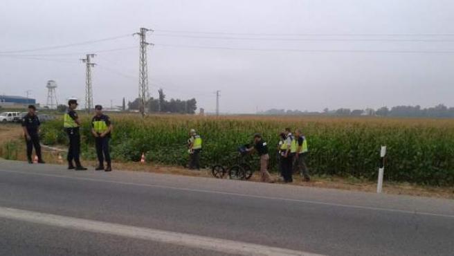 La Policía Nacional busca el cuerpo de Marta del Castillo en la Majaloba, La Rinconada (Sevilla).