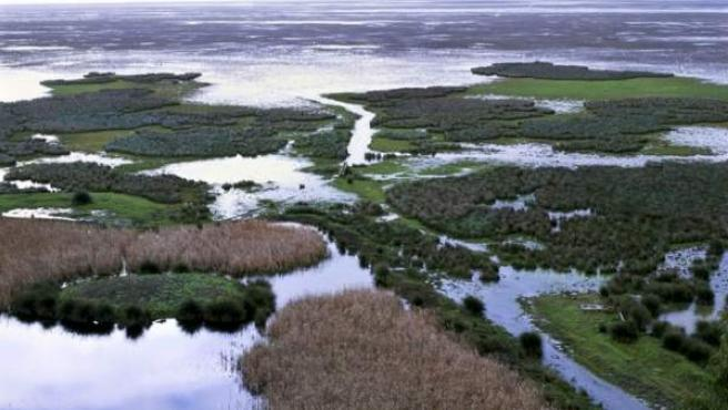 Marismas en Doñana de extraordinaria importancia para la cría de aves, refugio del lince ibérico y ecosistemas de dunas y playas.