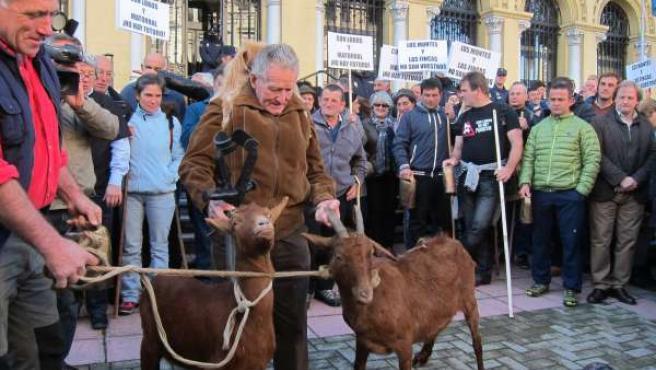 Protestas de ganaderos en Oviedo.