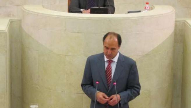 El presidente de Cantabria, Ignacio Diego, en debate orientación política