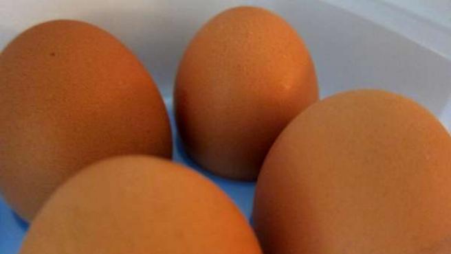 Huevos, Salmonela