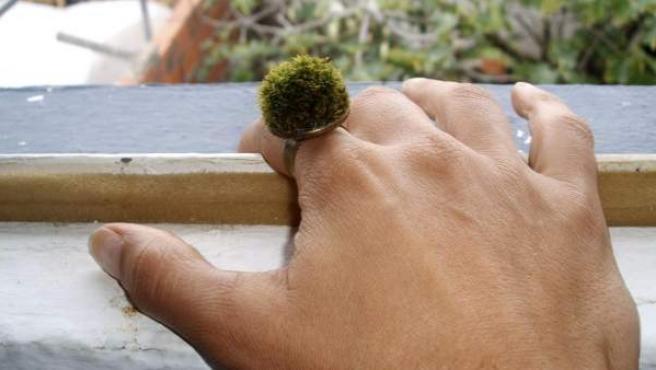 Fotografía facilitada por Natural Jewellery de una de sus joyas naturales.
