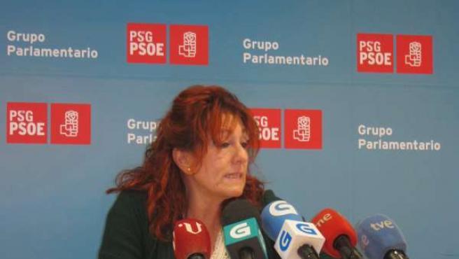 Carmen Acuña, portavoz de Sanidade del Grupo Parlamentario Socialista