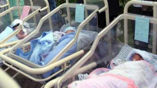 Bebés recién nacidos.