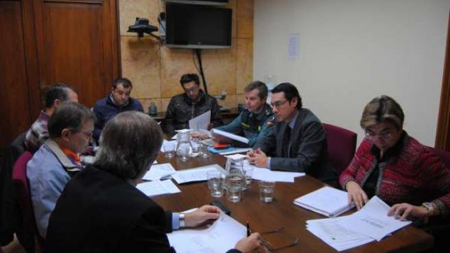 Comisión de Evaluación e Investigación de Incendios Forestales