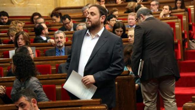 Asistentes al Pleno monográfico sobre la consulta en el Parlament.