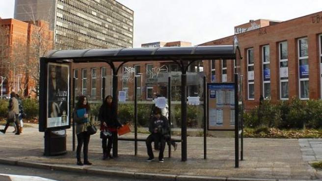 Un autobús se aproxima a una parada en la Avenida Complutense, en Ciudad Universitaria (Madrid).