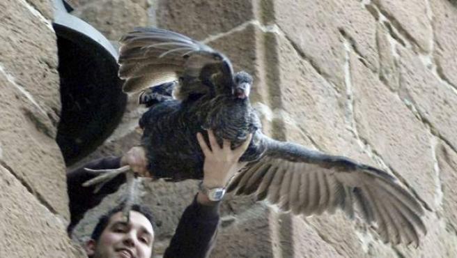 Un joven lanza la pava desde el campanario en otra edición de la fiesta.