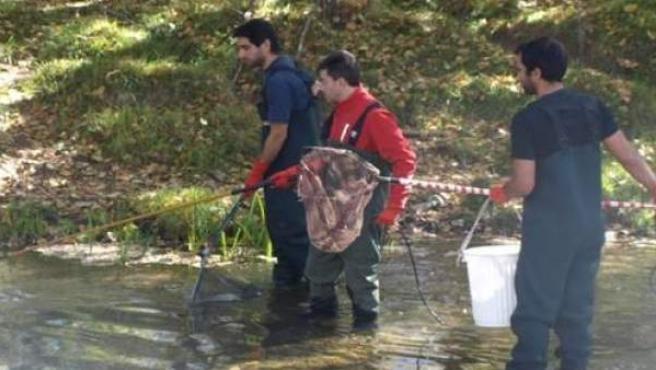 Investigadores realizan un muestreo en las aguas del río Júcar.