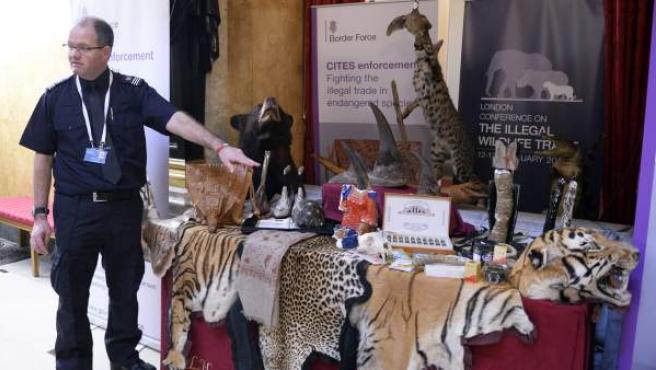 El agente de policía de aduanas del Aeropuerto de Heathrow Grant Miller muestra productos incautados durante la conferencia internacional sobre el comercio ilegal de animales salvajes.