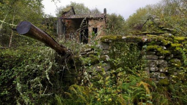 Pueblo abandonado de A Lavandeira, perteneciente al municipio orensano de San Cristovo de Cea.