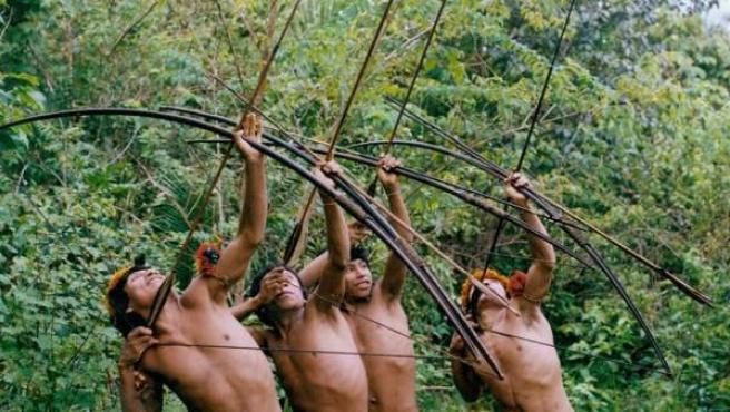 Los Awá, pueblo de Brasil del que solo quedan unos 45o individuos. foto: fiona watson / survival