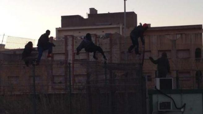 Inmigrantes subsaharianos en la valla fronteriza de Melilla.