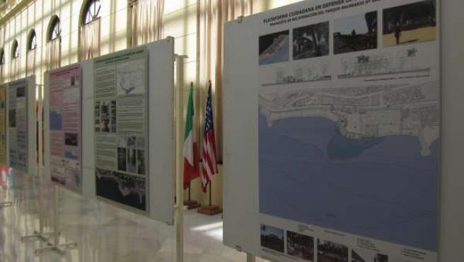 Exposición del proyecto de la Plataforma para la Defensa de los Baños del Carmen
