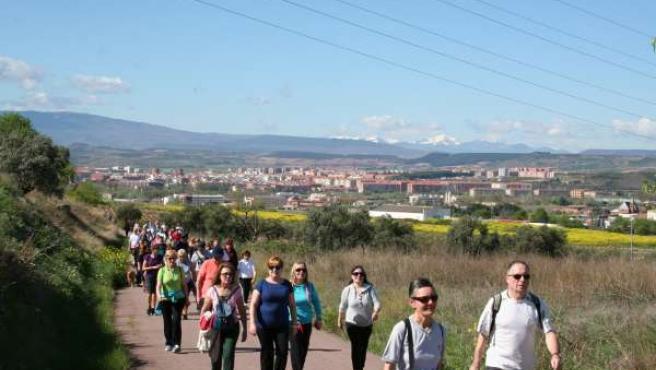 Primer paseo saludable 2014