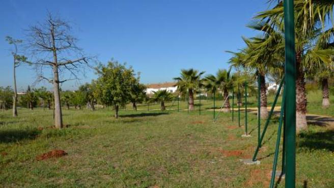 Parque de Porzuna.
