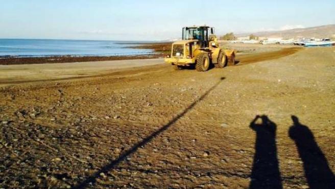 Limpieza playa de Castillo del Romeral