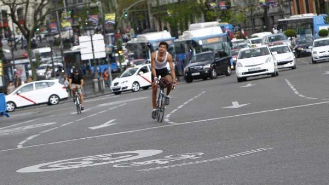 Varios ciclistas circulan entre el tráfico en el ciclocarril del eje Mayor-Alcalá, a la altura de Cibeles.