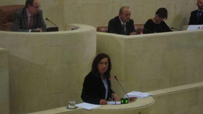 La diputada del PRC Matilde Ruiz