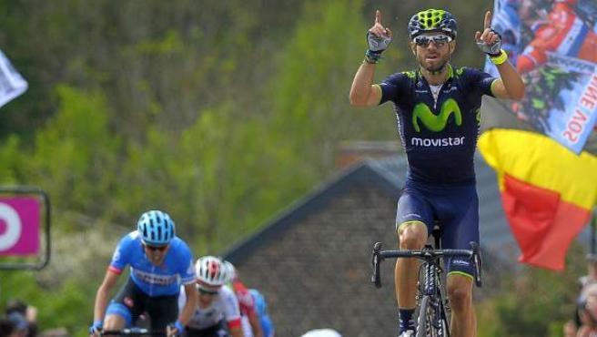 El español Alejandro Valverde, del equipo Movistar, celebra su victoria en la Flecha Valona 2014, carrera belga con final en el Muro de Huy.