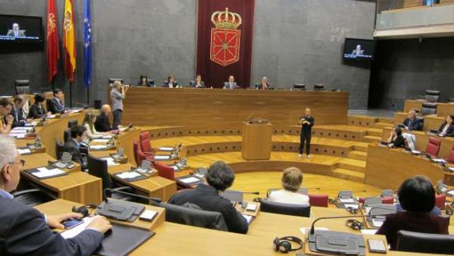 Celebracíon del segundo Foro Ciudadano sobre la UE en el Parlamento foral.