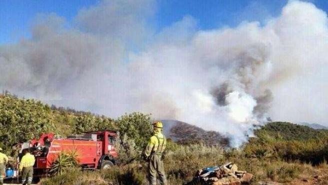 Imagen del incendio forestal de Torrent