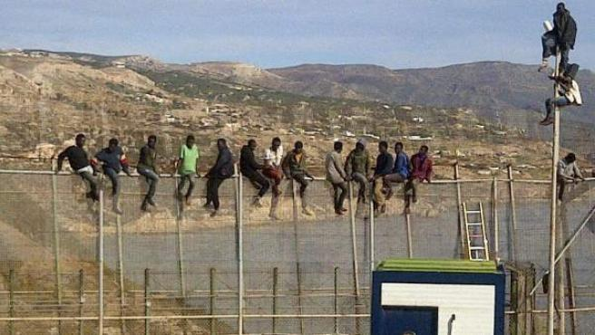Unos 25 inmigrantes de origen subsahariano, encaramados en la parte alta de la valla de Melilla.