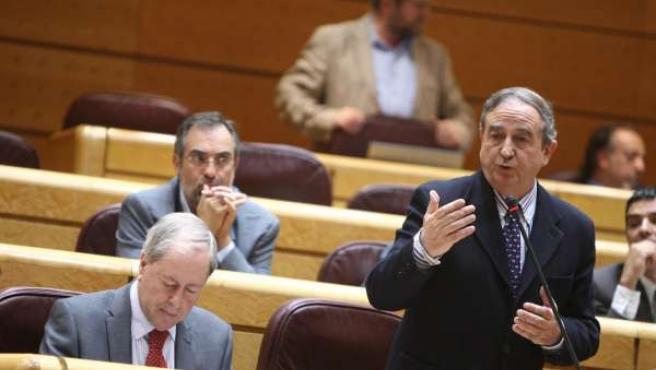 Iñaki Anasagasti en el Senado