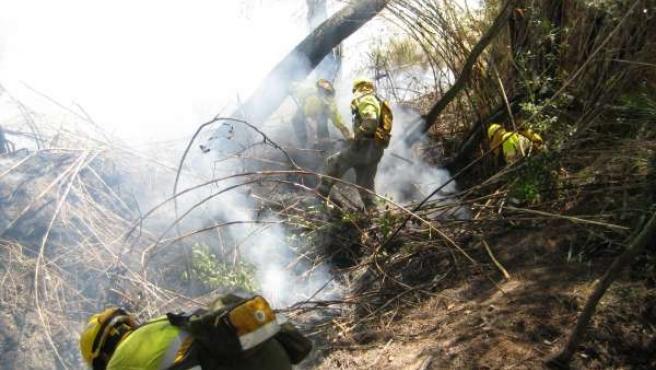 'Plan Thader' De Prevención Contra Incendios En Las Riberas De Ríos Y Ramblas