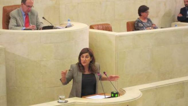 La consejera de Sanidad y Servicios Sociales, María José Sáenz de Buruaga