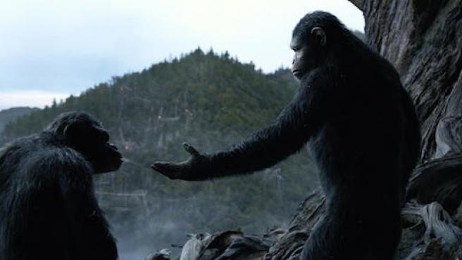 'El amanecer del planeta de los simios': Así empezó la gripe simia