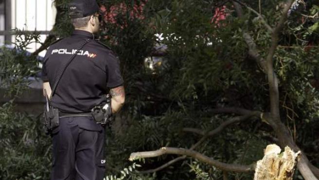 Lugar del parque del Retiro en el que cayó una rama que causó la muerte a un hombre de 38 años de edad.