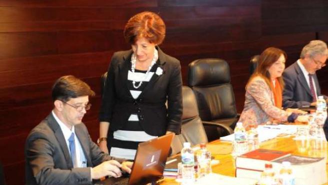 Ortiz, en el Consejo