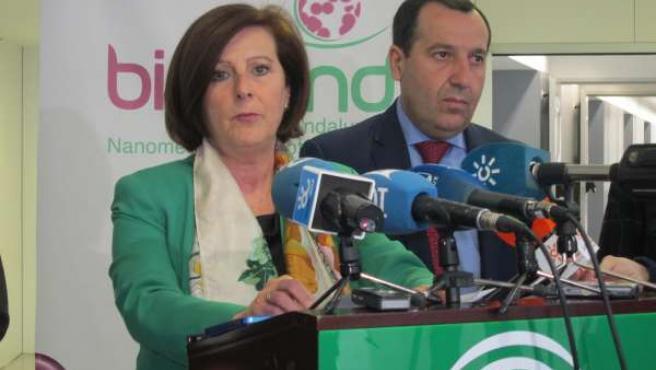 La consejera de Salud, María José Sánchez Rubio, en rueda de prensa