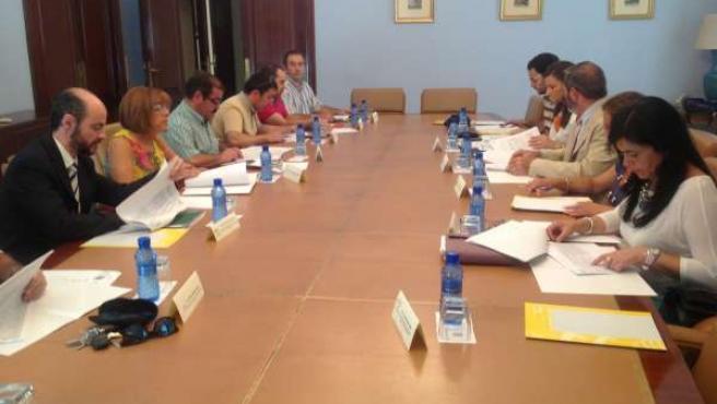 Reunión de la Comisión de Seguimiento del Pfoea
