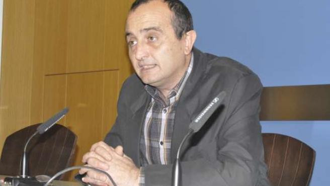 El concejal de IU-Zaragoza Raúl Ariza.