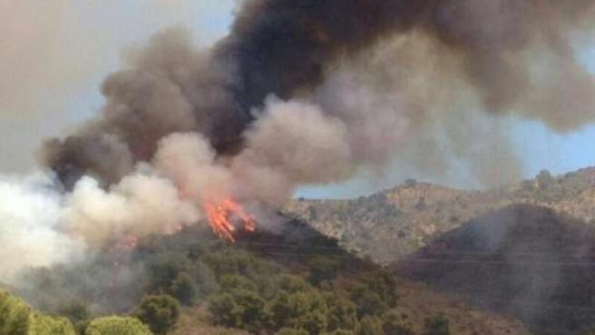 Incendio Montes de Málaga