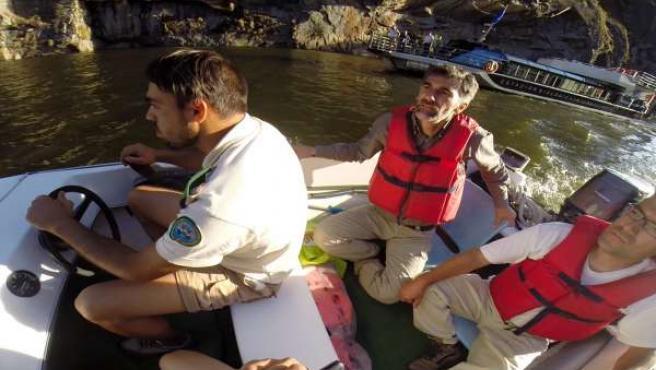 Momento del rescate del corzo en el Lago de Sanabria