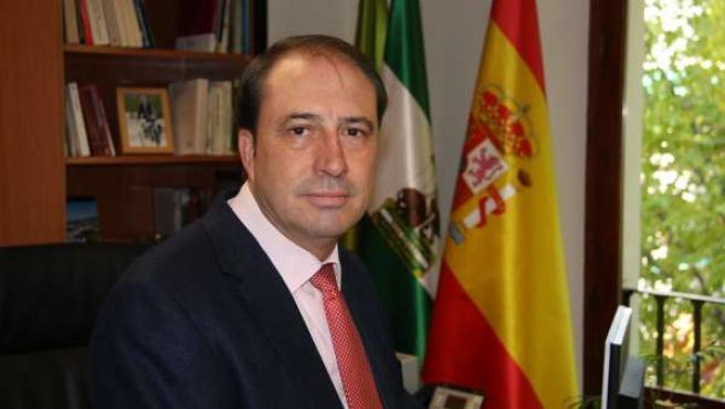 El diputado delegado de Turismo, Francisco Tarifa