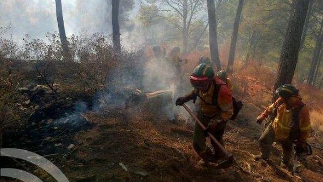 Incendio Forestal Montes Málaga, 10 agosto, Infoca