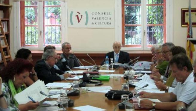 Pleno del CVC