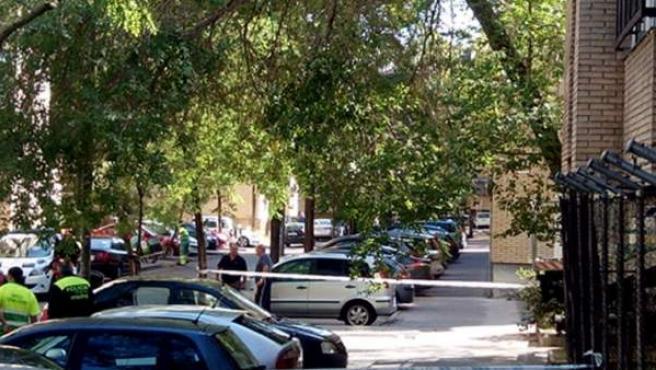 La zona afectada por la caída del árbol en la calle Participación, acordonada