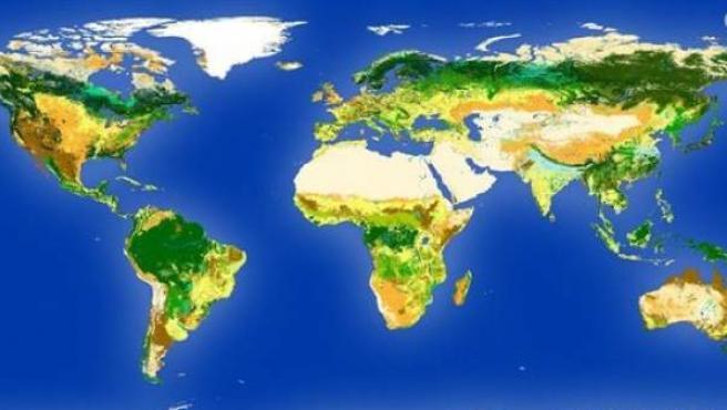 Mapa mundi de la Agencia Espacial Europea sobre la cobertura vegetal del planeta.