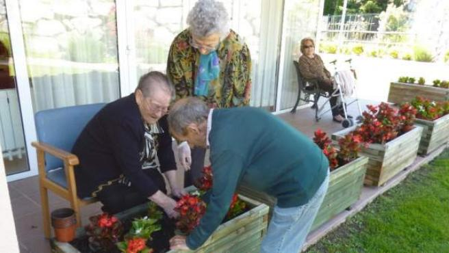 Tres ancianos plantan flores en una residencia para la tercera edad de Cataluña.